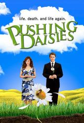 Image illustrative de Pushing Daisies