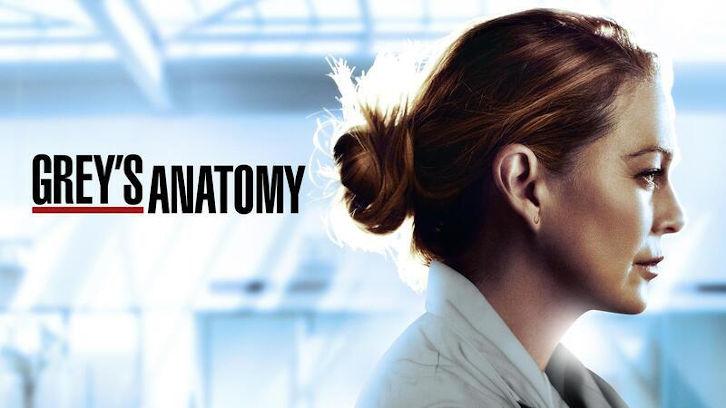 Affiche Grey's Anatomy saison 17