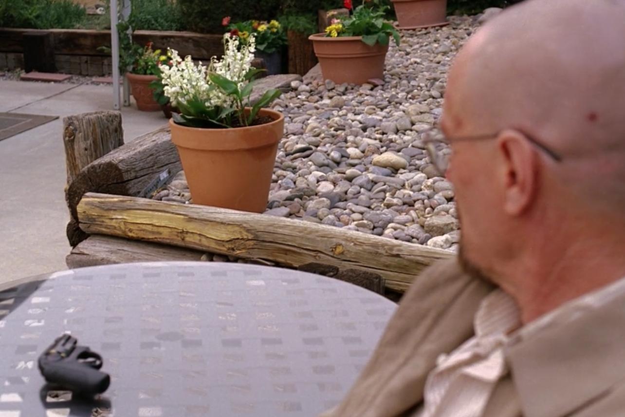 Walter et le lila