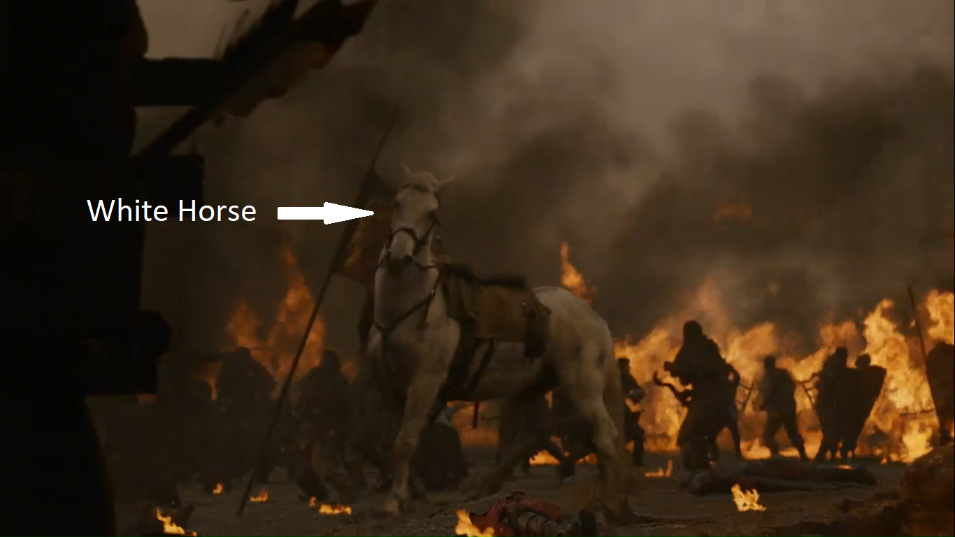 Le cheval blanc de Bronn