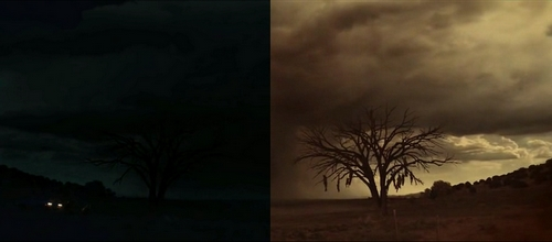 Parallèle arbre
