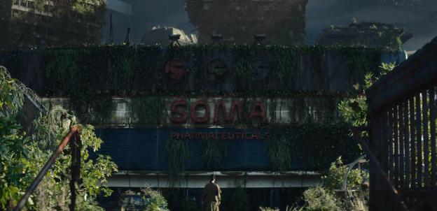 Devanture de Soma Pharmaceuticals, sous la végétation.